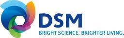 LJB-logo-dsm-foods.jpg - large